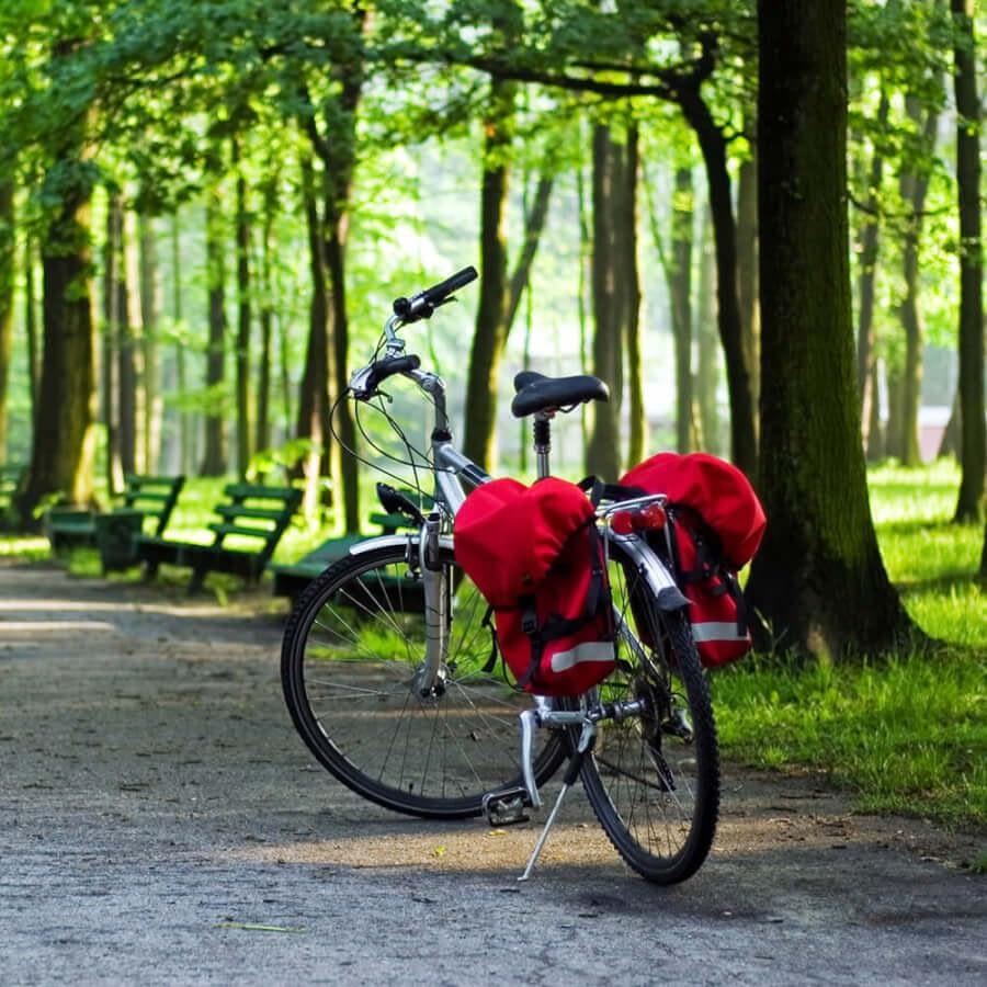 Wycieczki rowerowe po okolicy
